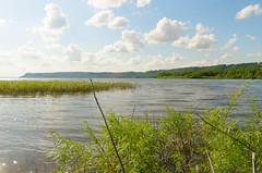 Confluence (wackybadger) Tags: water wisconsin river nikon mississippiriver lakepepin piercecounty wisconsinstatenaturalarea nikond7000 sigma1020mmf4exdchsm rushriverdeltasna sna202