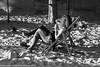 IMG_6761.jpg (matthieu.butruille-Photographie) Tags: paris couchédesoleil personnage parasole quaideseine parisplage scènederue
