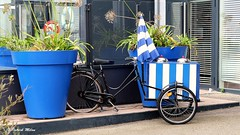 Blue trike (patrick_milan) Tags: velo cycle tricycle brest port harbour