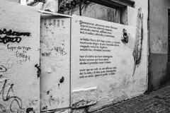... CXXVI ... (Lanpernas 3.0) Tags: lope lopedevega ciclodelucinda soneto 126 streetart arte arteenlacalle literatura poesía zamora love amor l´amour enelmuro inthewall