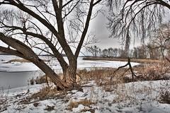 The edge of Mendota (mkschumacher) Tags: lake landscape mendota winter wisconsin
