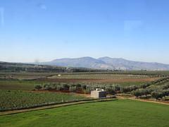 Fields, view of mountains from railway west of Fez, Morocco (Paul McClure DC) Tags: morocco fez almaghrib dec2016 scenery fèsmeknèsregion