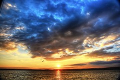 Volo libero (giannipiras555) Tags: landscape sole nuvole lago nikon tramonto sunset natura