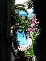 Glipmse into a Capri villa
