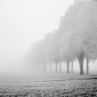 Heroes Alley in the Icy Fog - Heldenallee im eisigen Nebel