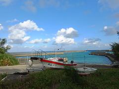 DSCF0594 (cheico) Tags: 奄美大島 amamioshima