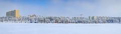 Titan Park Pano (Cristian C. Photos) Tags: winterlake winter romania bucharest frozen frost lake frozenlake