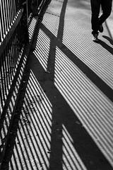 Walk in Segments (Torsten Reimer) Tags: shoes france gitter schatten railing paris europa frankreich blackandwhite patterns walking shadows schwarzweis europe pavement fence paris19earrondissement îledefrance fr