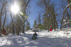 Big Bear Jan 2017 (TeamNovak) Tags: bigbear california snow winter family sledding fun cold cute mountain