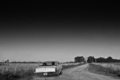 Riding [Pontiac Catalna 1962] (Laura__0000) Tags: world life travel viaje family friends light sunset wild sky people blackandwhite bw favorite naturaleza sun moon men blancoynegro argentina reunion monochrome smile field car rural canon vintage fun outside outdoors person photography drive countryside buenosaires classiccar automobile afternoon exterior friendship shot sundown image farm candid lifestyle sunny places retro explore human american enjoy transportation campo vehicle rides exploration turismo 1962 goldenhour locations blackandwhitephotography fotografa documenting allpeople flickraddicts monocromatico pontiaccatalina theworldthroughmyeyes coronelvidal flickrglobal pontiaccatalina1962oldschool