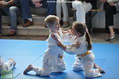 Judo-habay048