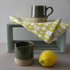 Gloss Green Glaze (Jude Allman) Tags: green ceramic ceramics crafts craft pot pots jude clay jug pottery jugs folksy allman