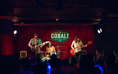 The Shivas at Cobalt by Steven Sheperd