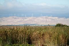 Windmills (fzx_is_phun) Tags: northerncalifornia windmills alternativeenergy centralcalifornia sanjoaquinvalley greenenergy sanjoaquincounty caiforniadelta