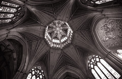 ely int 2 (yamatime) Tags: uk summer stone canon cathedral shift ely vault 24mm tilt tse 5d3