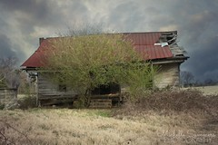 (SouthernHippie) Tags: rural ruin decay overgrown vacant exploring empty abandoned american south southern sky sad serene wow countryside country green rust red cloud home field pretty alabama birmingham photographer