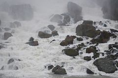 American Falls [Niagara Falls - 3 January 2016] (Doc. Ing.) Tags: 2015 canada ontario on winter northamerica niagarafalls water river waterfall americanfalls