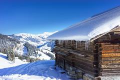 DSC01886.jpg (D.Goodson) Tags: didier bonfils goodson côte 2000 planey beaufortain ski rando