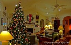 Merry Christmas and Happy Holidays (T i s d a l e) Tags: tisdale merrychristman house home december 2016 easternnc
