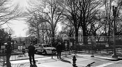 2017.02.04 No Muslim Ban 2, Washington, DC USA 00421