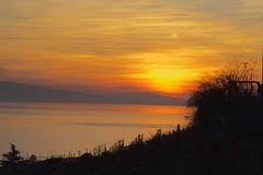 Leman sunset (Riex) Tags: sunset coucherdesoleil paysage landscape lac lake leman vaud suisse switzerland a100 minoltaamount amount sal1680z carlzeisssonyf35451680mm variosonnartdt35451680