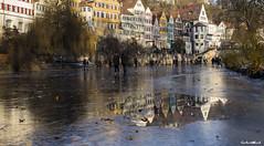 Tübingen im Winter #05 (Gerhard Busch) Tags: bäume eis eisdecke neckar platanenallee spaziergang tübingen winter gefroren