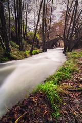 Silky Stream (Alex Apostolopoulos) Tags: longexposure vegetation water bridge flow river silk stream trees forest landscape cyprus sony sonya6000 ilce6000 samyang12mmf20ncscs samyang haidafilter manfrottobefree