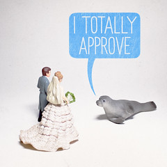 The Seal of Approval (aledlewis) Tags: sael nature toys toystories wedding marriage marry bride groom dress approval makesomething msced 365project