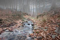 Nature (Martin Snicer Photography) Tags: flow nature 1018mm wideangle photographer