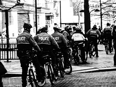 2017.02.04 No Muslim Ban 2, Washington, DC USA 00536