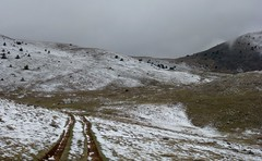 sur le versant nord du Cheiron (b.four) Tags: montagne mountain montagna neige neve snow cheiron bezaudunlesalpes alpesmaritimes ruby10
