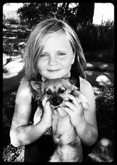 (BurstsofSingleMindedness) Tags: summer dog chihuahua girl female sweet rip memories daughter girlanddog 2011 chipchip theygrowupfast