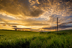 (Eric Goncalves) Tags: sunset color green rural landscape countryside spring warm fuji view x gloucestershire fields fujifilm fujinon springtime xseries xt1 ericgoncalves fujifilmx fujifilmxt1 fujixt1