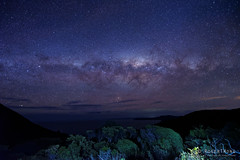 20150719-67-Milky Way (Roger T Wong) Tags: winter sky night trek stars outdoors nationalpark walk australia hike tasmania np bushwalk tramp campsite milkyway 2015 tasmanpeninsula capepillar sony1635 lunchtimecreek rogertwong sel1635z sonya7ii sonyilce7m2 sonyalpha7ii sonyfe1635mmf4zaosscarlzeissvariotessart
