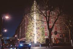 Christmas Tree (Blue Changhui Lee) Tags: christmas tree art installation the connaught hotel antony gormley 2016