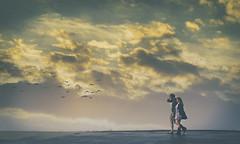 Skywalking (charhedman) Tags: fordwordenpark washingtonstate couple roof walking clouds birds