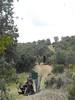 Spain Ibex Hunt & Driven Partridge Hunts 61