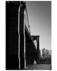 Under the bridge (Manxscape Photography) Tags: brooklyn new york usa states bridge yacht sailing pleasure bw andrewhaddock manxscape m43 panasonic g80 shadow east river