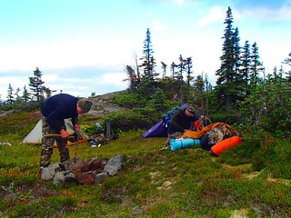 British Columbia Wolf Hunt & Big Game 18