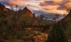 Zion National Park, Utah. (Sveta Imnadze) Tags: zionnp utah sunset clouds