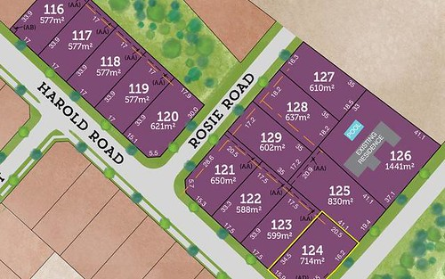 Lot 124 Harold Road, Raymond Terrace NSW 2324