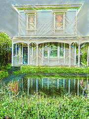 I Hope Wooden Houses Float (Steve Taylor (Photography)) Tags: art architecture digital house weatherboard water puddle wooden newzealand nz southisland canterbury christchurch hedge bush reflection