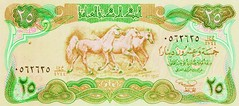 "Helicopter Money / Iraq - ""Would you choose the weak horse or the strong horse?"" (ramalama_22) Tags: gulf war mid east middle iran iraq ayatollah khomeini saddam hussein george bush pysch ops inflation social unrest helicopter money replica fake countefeit currency central bank strong horse"