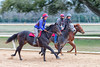 Winter Training (APGougePhotography) Tags: horse aiken southcarolina south carolina sc thoroughbred track training equestrian motion moving blur nikon nikond800 nik d800 adobe colorefexpro