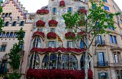 LA CASA BATLLÓ (marthinotf) Tags: barcelona díadesanjordi 23deabril2016 casabatlló example ensanchedebarcelona paseodegracoa43 manzanadeladiscordia geometríareflejada arquitectua arquitecturamodernista etapanaturalista arquitectura epocamodernista casa amatlles