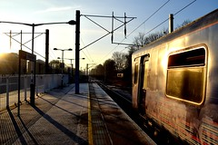 Great Northern 313053 - New Barnet (North West Transport Photos) Tags: greatnorthern 313 class313 313053 fcc firstcapitalconnect newbarnet br brel britishrail emu electricmultipleunit pep train london