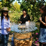 Weinprobe auf dem Weingut Lapostolle in Chile