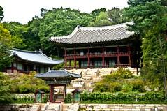 Secret Garden III (Miquel Llagostera) Tags: contrast temple korea seoul vacaciones templo seul vactions