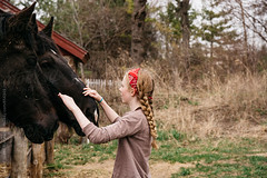 we like our horses! (gabster_ro) Tags: ranch portrait horse pet playing love beautiful beauty smiling animal barn rural fence outdoors countryside farm young domestic together strong copyspace care breed stable equestrian stud stallion equine corral stockphoto royaltyfree stocksy