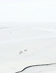 Low tide and adventurous people (pontitchello) Tags: people nikon minimal lowtide